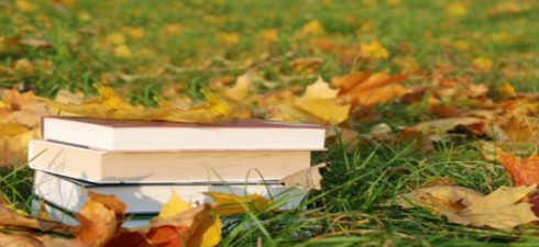 Stock up on your fall and winter reading! Tons of books, music, film and games at low prices! Friday, October17 from 6:30PM to 8:30PM—Preview night for Friends of the Library […]
