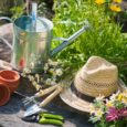 Do you have a beautiful garden you'd like to share with others? Enter the Great Gardens Contest! Sponsored by the Shaler Garden Club and SNHL. All types of gardens will […]