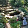 Congratulations to the McAllister Garden! The first place winner of our 2018 Great Local Gardens Contest! Two very special gardens tied for second place! The Altenbaugh Garden and the Funovits […]