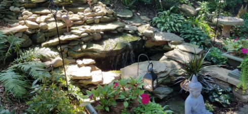 Tour 5 beautiful local area gardens with great variety, color, and detail. Talk to club experts, gather ideas and inspiration! Rain or shine. Carpooling is fun and be sure to […]