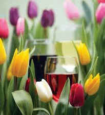 A Taste of Spring Wine Tasting With John Eld. Join us on Saturday, May 4 from 7:00-9:00 PM @ SNHL for a very special fundraiser with local wine connoisseur John […]