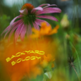 Tuesday, May 21, 2:00-3:30pm or 6:30-8:00pm Creating wildlife habitats in your yard provides food, water, shelter, and nesting sites for a variety of organisms.The photo exhibit is an introduction to […]