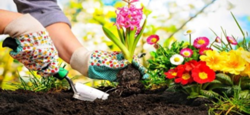 Spring into action and enter the 2019 Great Local Gardens Contest! Sponsored by the Shaler Garden Club and the Shaler North Hills Library. Don't hide your beautiful garden behind a […]