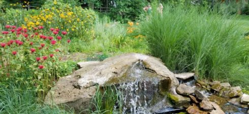 Sunday, July 19 at 11:00am (Submissions due July 14) Every year the Library and the Shaler Garden Club partner to celebrate the beautiful garden spaces our community creates. While we […]