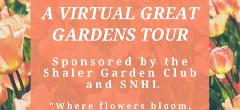 Visithttps://shalergardens.blogspot.com to enjoy the tour and visit your neighbor's gardens. If you enjoyed the tour, please donate via www.shalerlibrary.org. Thank you! For over 10 years the Shaler Garden Club and […]